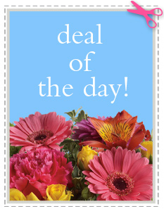 Deal of the Day in Fort Benton MT, Riverview Floral And Greenhouse